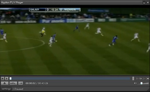 Recorded MegaVideo.com video playing in Applian FLV player